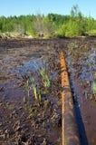 Poluição da natureza por produtos petrolíferos Fotos de Stock