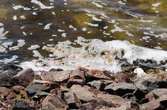 Poluição de água fotos de stock