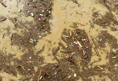 Poluição de água do lago com sacos de plástico fotos de stock