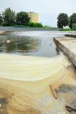 Poluição de água no.1 Fotos de Stock Royalty Free