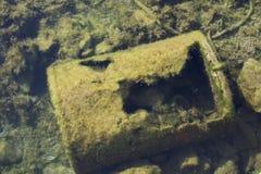 Poluição do assoalho de mar do adriático Imagens de Stock Royalty Free