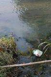 Poluição do rio Foto de Stock Royalty Free