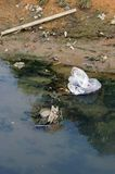 Poluição do rio Imagens de Stock Royalty Free