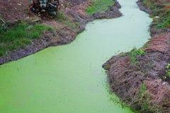 Poluição do rio foto de stock