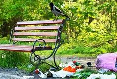 poluição Problema ambiental Lixo (desperdícios) perto do banco imagem de stock royalty free