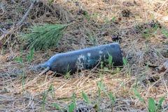 Polui??o ambiental Os povos deixaram restos nos animais selvagens Descarga de lixo na grama perto do parque da natureza e da cida imagem de stock