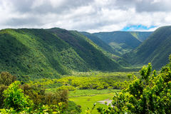 Polulu Valley. A gorgeous lookout over the Polulu valley on the north shore of the Big Island - Hawaii Royalty Free Stock Image