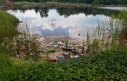 Poluted lake Royalty Free Stock Image