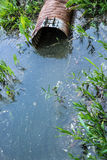 Polution in a lake. A culvert with pollution / posion in a lake / body of water Royalty Free Stock Image