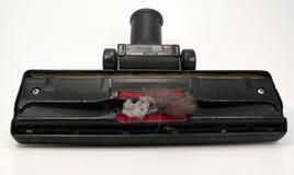 polvere Fotografia Stock Libera da Diritti