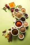 Polvere cruda indiana della spezia in ciotole bianche sopra fondo rosso o giallo o verde, fuoco selettivo Fotografia Stock