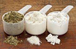 Polvere del proteina del siero e della canapa Fotografie Stock