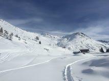 Polvere della neve Fotografia Stock Libera da Diritti
