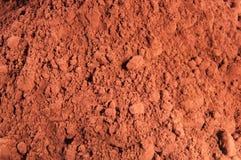 Polvere di cacao Immagine Stock