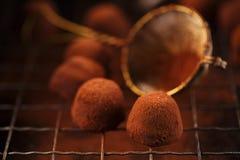 Polvere di cacao dei tartufi di cioccolato impolverata Fotografie Stock