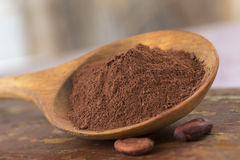 Polvere di cacao presentata in un cucchiaio di legno Immagine Stock Libera da Diritti