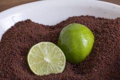 Polvere di cacao a terra con le calce fresche Fotografia Stock