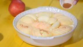 Polvere di diffusione della cannella sulla torta di mele Mano che spruzza condimento sulla torta di mele Produrre torta di mele d stock footage