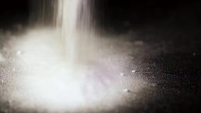 Polvere lanciata, isolata su fondo nero La polvere bianca versa Polvere bianca simile a cocaina che si rovescia sul nero stock footage