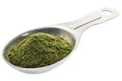 Polvere organica liofilizzata dell'erba del frumento Fotografia Stock
