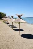 Polvese island beach Stock Images