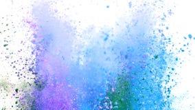 Polvo colorido que estalla en el fondo blanco en la c?mara lenta estupenda almacen de metraje de vídeo