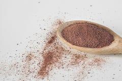 Polvo de cacao en cuchara de madera Fotografía de archivo