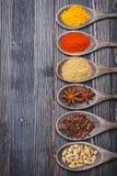 Polvo de chile de las especias, cúrcuma, masala, cardamomo, coriandro, anís de estrella Imágenes de archivo libres de regalías