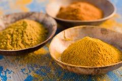 Polvo de curry Fotografía de archivo