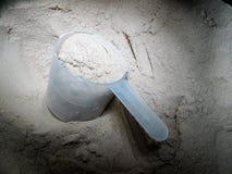 Polvo de la proteína Imagen de archivo libre de regalías