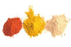 Polvo del curry, de la paprika y del jengibre fotografía de archivo