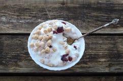 Polvo del trigo con el yogur Foto de archivo libre de regalías