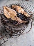 Polvo grelhado Imagem de Stock