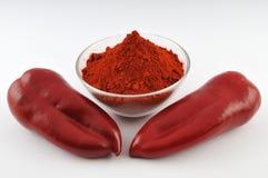 Polvo rojo de la paprika Imágenes de archivo libres de regalías