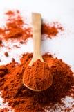 Polvo rojo de la paprika Fotos de archivo