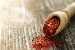 Polvo secado del tomate en una cuchara de madera Imágenes de archivo libres de regalías