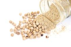 Polvo y semilla de la pimienta blanca Foto de archivo