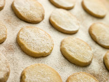Polvorones Biscuits Royalty Free Stock Images