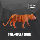 Poly design. Tiger illustration. tiger vector. Illustration. polygonal animal series. Tiger body vector isolated, geometric modern illustration Royalty Free Stock Photography