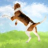 Poly Dog Outdoors-05 stock illustration