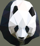 Poly Panda. Polygon styled graphic panda Stock Photos