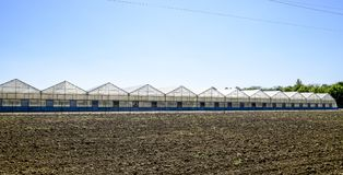 Polycarbonate greenhouses. Greenhouse complex. Greenhouses for growing vegetables under the closed ground Stock Images