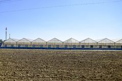 Polycarbonate greenhouses. Greenhouse complex. Greenhouses for growing vegetables under the closed ground Royalty Free Stock Photography