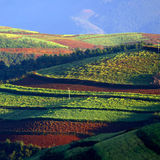 Polychrome  land. It is  polychrome  land in afternoon Royalty Free Stock Photos