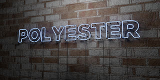 POLYESTER - Glowing Neon Sign on stonework wall - 3D rendered royalty free stock illustration. Can be used for online banner ads and direct mailers Stock Photos