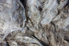 Polyethyleenhuisvuil Stock Afbeelding