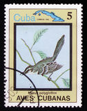 Polyglottos del Mimus, dal ` cubano degli uccelli del ` di serie, circa 1983 Immagine Stock Libera da Diritti