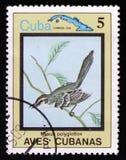 Polyglottos Mimus, от ` птиц ` серии кубинського, около 1983 Стоковое Изображение RF