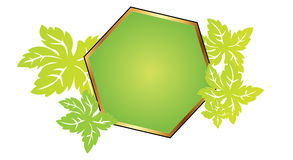 Polygon frame with leafs Stock Photo
