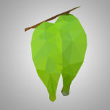 Polygon fresh leaf Stock Image